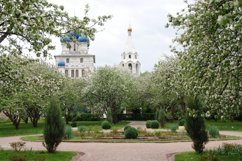 Во время экскурсии в Коломенском